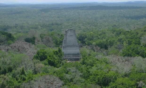 Обнаружен скрытый район в древнем городе майя