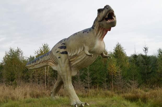 Как нам сохранить динозавров?