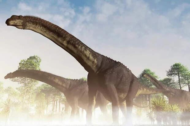 Найдены останки самого большого сухопутного животного за всю историю Земли Динозавры, Исследования, Научные открытия, Рекордсмен, Палеонтология, Длиннопост