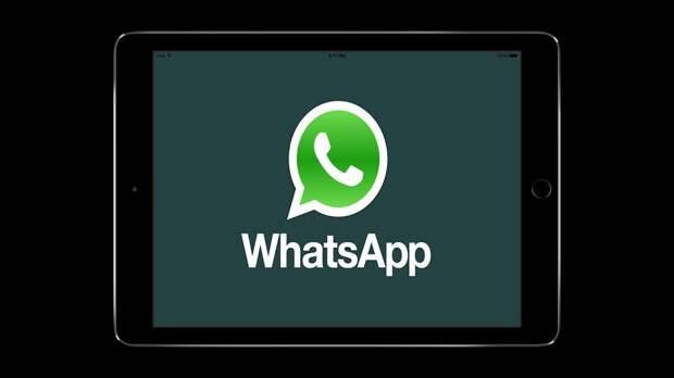 В ГД РФ прокомментировали введение новых правил на платформе WhatsApp