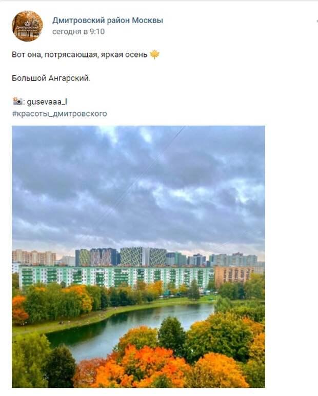 Фото дня: яркая осень в парке «Ангарские пруды»