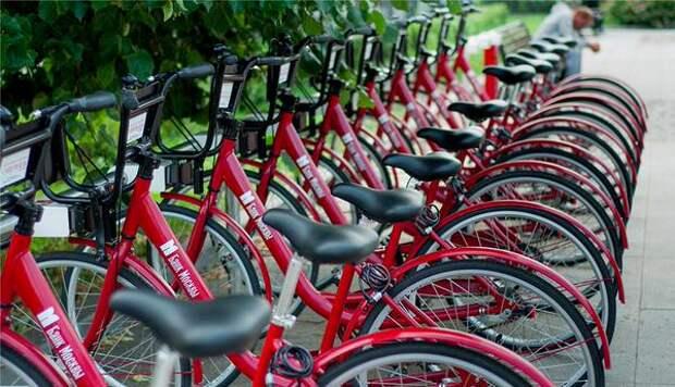 Эх, прокачусь: в двух парках СЗАО сегодня подешевел прокат велосипедов