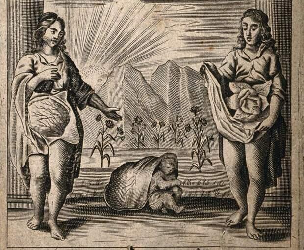 10 предрассудков, связанных ссексом, вкоторые верили наши предки