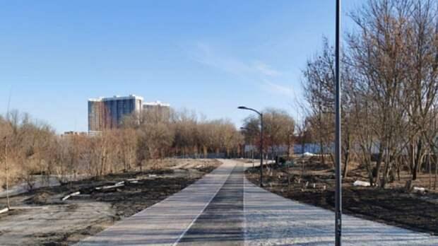 Экопарк вдоль Темерника в Ростове достроят с отставанием на год