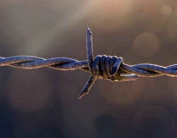 Посидел за друга - посидит за себя: в Ростове вынесли приговор заменившему в тюрьме приятеля