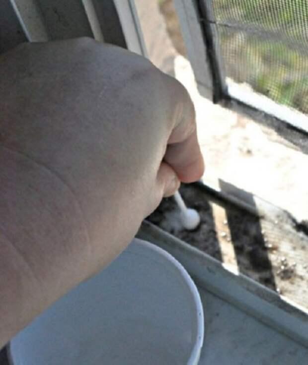 Научись быстро мыть окна с этим простым трюком! Всего пару движений, и чистота гарантирована…