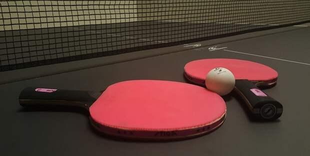 В Лианозове идёт набор в бесплатную секцию настольного тенниса