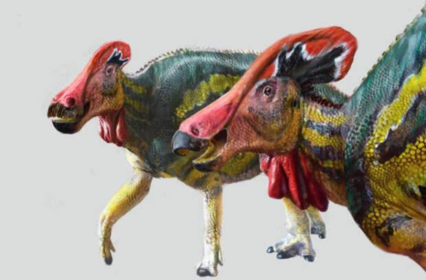 В Мексике выявили новые виды динозавров, отпугивающих врагов сильными криками