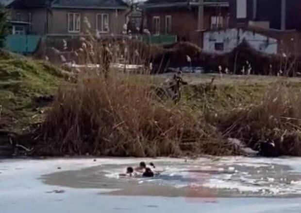 В Краснодаре спасли школьников, провалившихся под лед