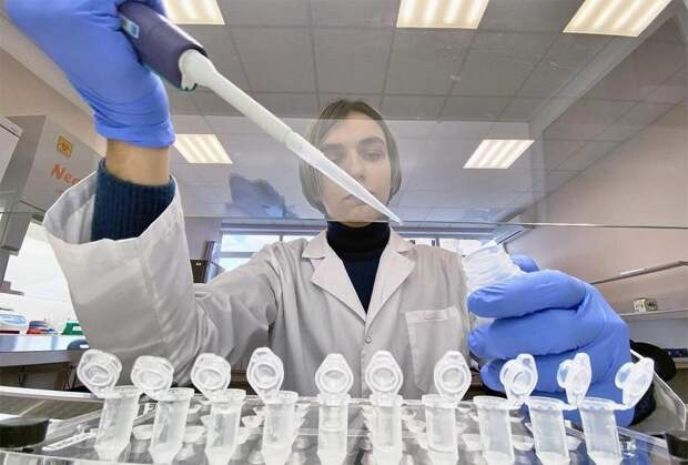 Вирусолог назвал условия для появления «суперштамма» коронавируса