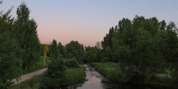 Сквер по Олонецкому претендует на звание лучшей локации для вечерних прогулок
