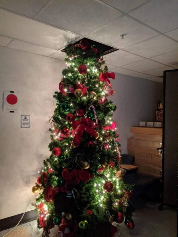 Высокая ёлка в офисе