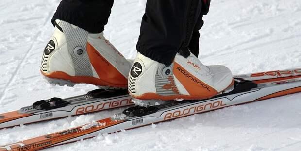 Кросс Кантри Лыжи, Трассы Для Беговых Лыж, Зимой