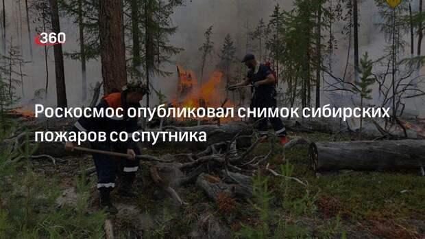 Роскосмос опубликовал снимок сибирских пожаров со спутника