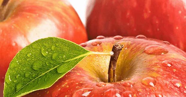 Очищаем наши почки и мочевые пути простым и вкусным средством! Рецепт