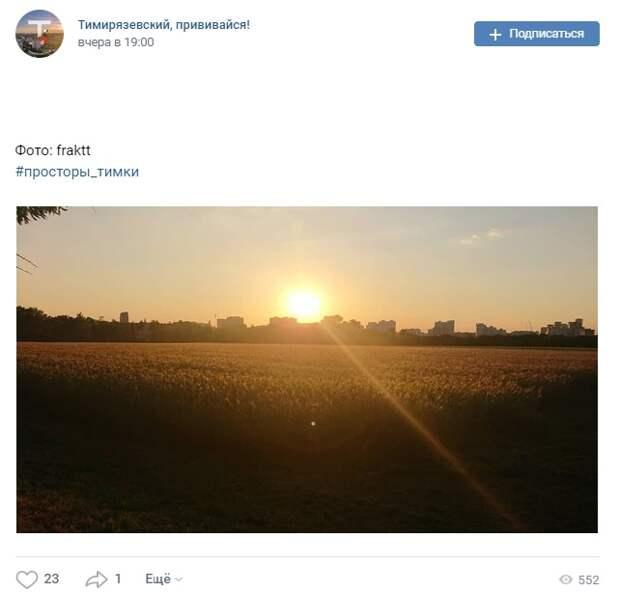 Фото дня: закатное солнце над Тимирязевскими полями
