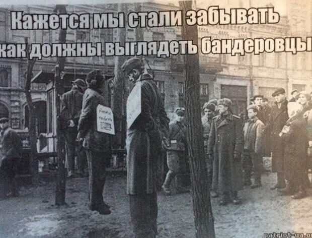 Бужанский: На Украине реабилитировали доктора Менгеле