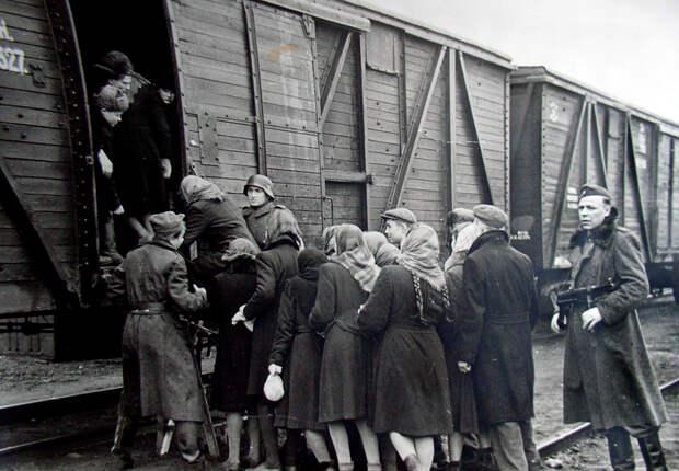«Родина вас простила». Что ждало дома подростков, которые работали на немцев в Германии?