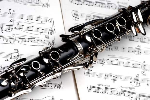 Koktebel Jazz Party: стало известно, какие звёзды могут выступить в Крыму