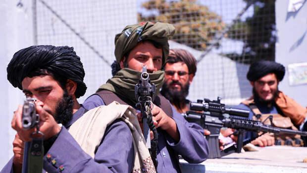 Талибы казнили помогавшего британской армии афганского снайпера на глазах его семьи
