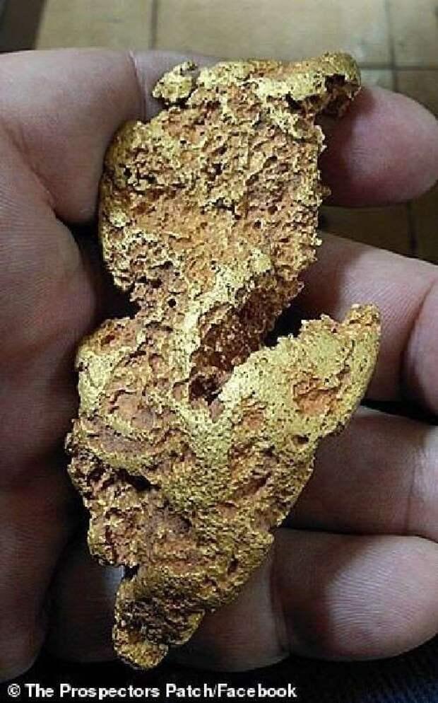 Австралийский золотоискатель нашел самородок стоимостью 30 000 долларов (5 фото)