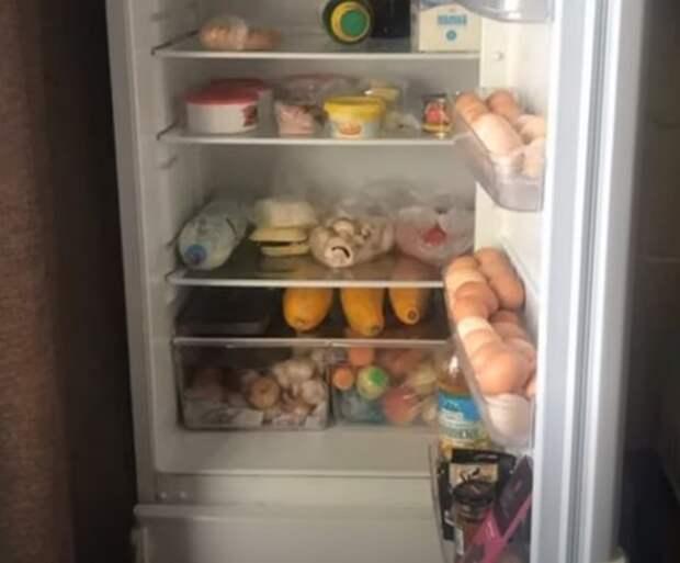 Почему моя свекровь никогда не моет холодильник
