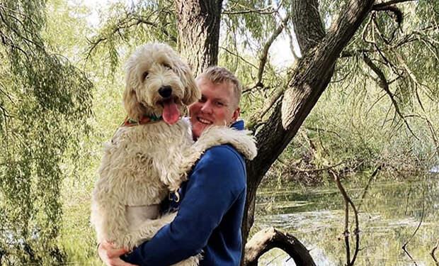 Пара купила щенка ручной породы, а через полгода он вырос и стал выше хозяев