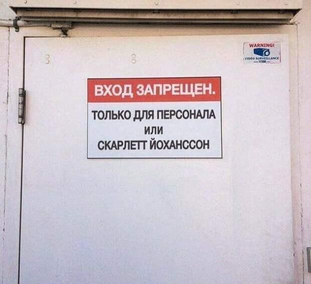 2. Любят у нас в стране Скарлетт вход запрещен, не влезай убьет, объвления, прикол, россия, смешно, таблички, фото