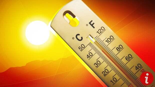 Онищенко перечислил главные правила безопасного отдыха в аномальную жару