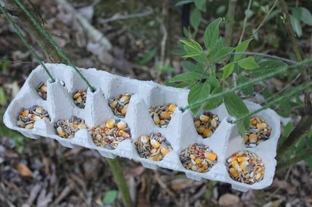 Лунки для посева: морковь, лук, редиска взойдут через неделю. Для быстрой разметки грядок