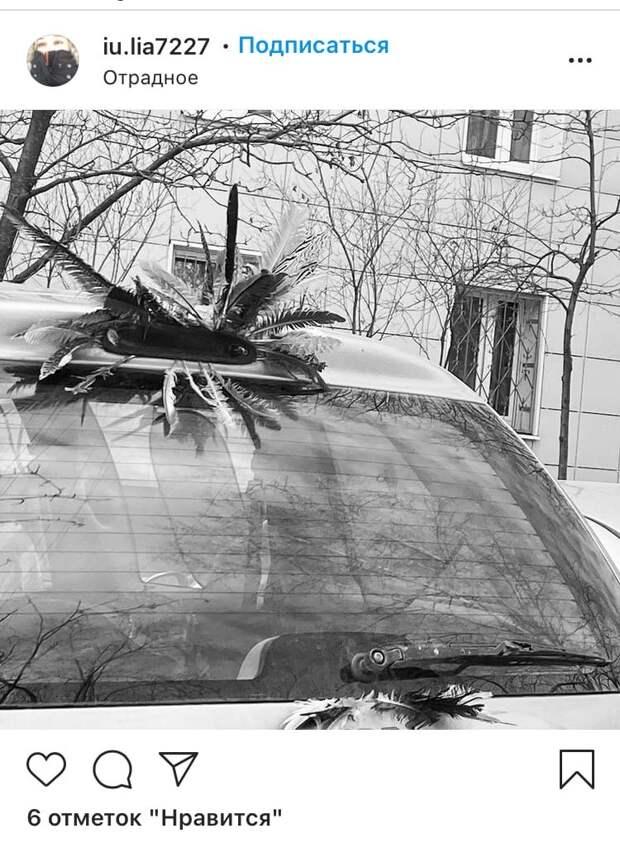 Фото дня: автомобиль в Отрадном «отрастил» крылья