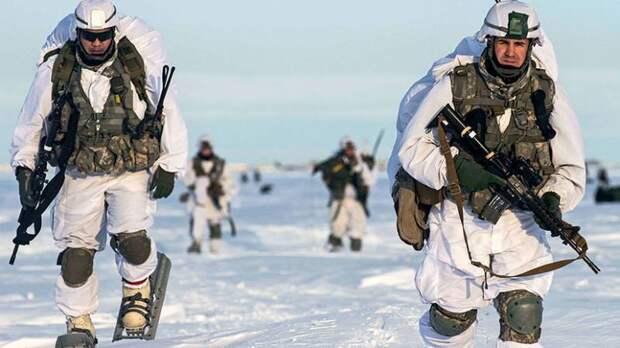 НАТО рвётся в Арктику, но она альянсу не по зубам