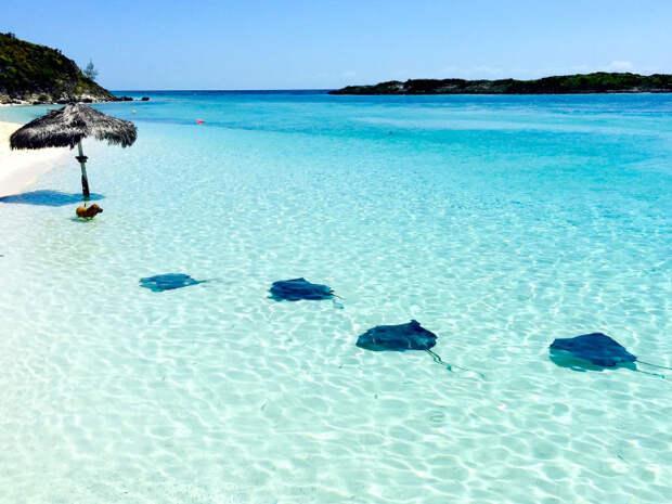 Белоснежный песок, лазурная гладь воды, шикарные отели и клубы, прогулки с аквалангом: о чем еще можно мечтать? /Фото: us-east.manta.joyent.com