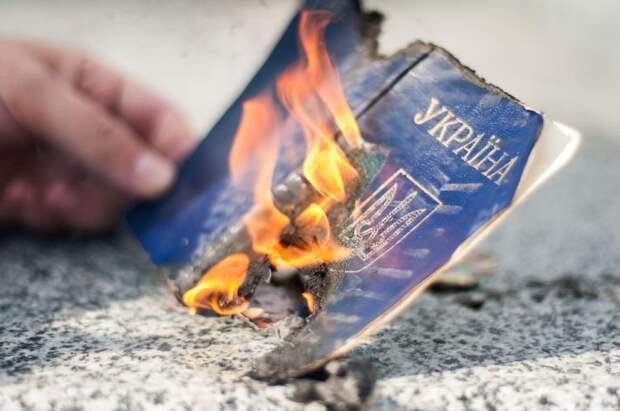 «Украина, идивжопу»: украинка иеё дети выбросили паспорта (ВИДЕО)