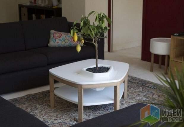 Bellila, стол «Volcane» с емкостью для растения