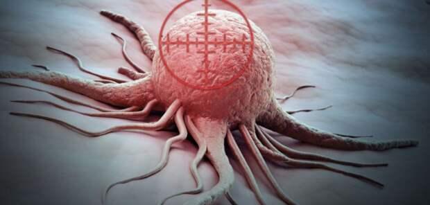 Учёные планируют использовать вирусы при лечении онкологии
