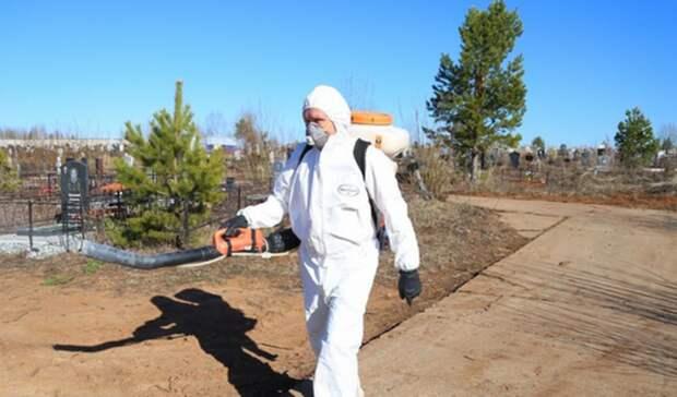 В Ижевске началась обработка городских кладбищ от клещей и грызунов