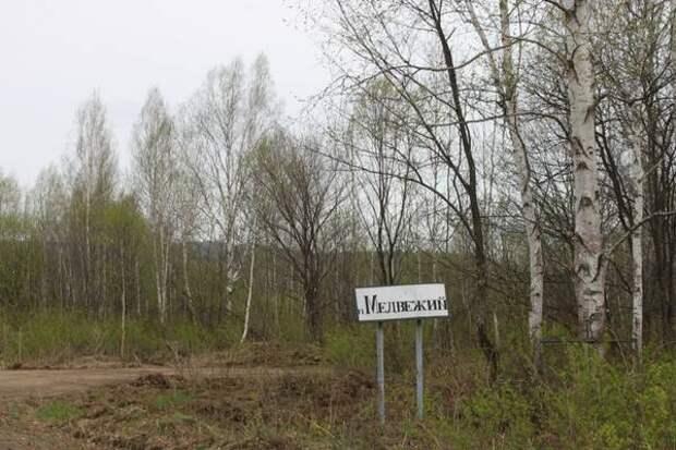 """""""Узкоколейка"""" вместо дороги будет в одном из районов Хабаровского края"""