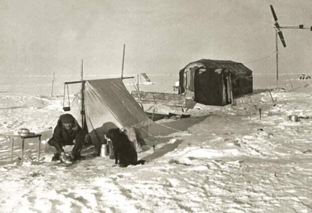 Что надо есть, чтобы выжить на Северном полюсе