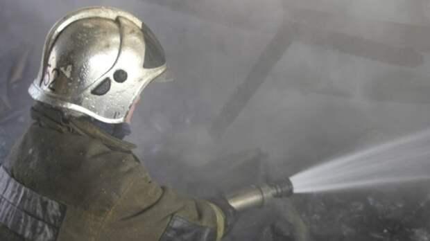 Спасатели смогли ликвидировать лесной пожар вблизи деревни в Омской области