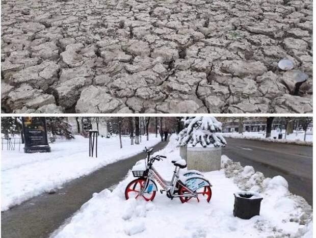 Путин дал задание правительству срочно разработать экологическую программу