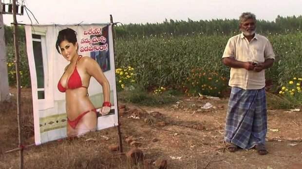 Индийский фермер защищает урожай плакатами с полуголой порнозвездой