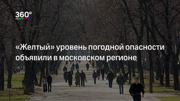 «Желтый» уровень погодной опасности объявили в московском регионе