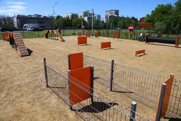 Петр Толстой помог открыть две новые площадки для выгула собак в Выхино- Жулебино. Автор фото: Александр Чикин
