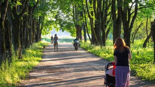 Первые объекты 2021 года благоустраивают по нацпроекту в Алтайском крае