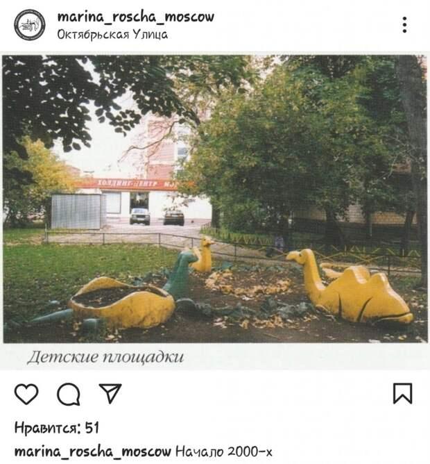 Фото дня: верблюды «отдыхают» на Октябрьской