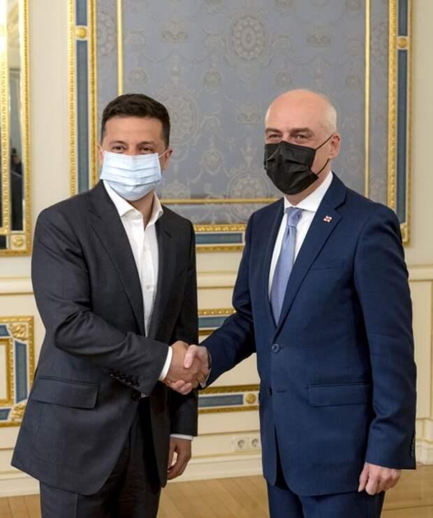 Зеленский обсудил с главой МИД Грузии взаимодействие на пути евроатлантической интеграции