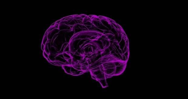 Соединения меди и железа обнаружили в мозгах пациентов с болезнью Альцгеймера