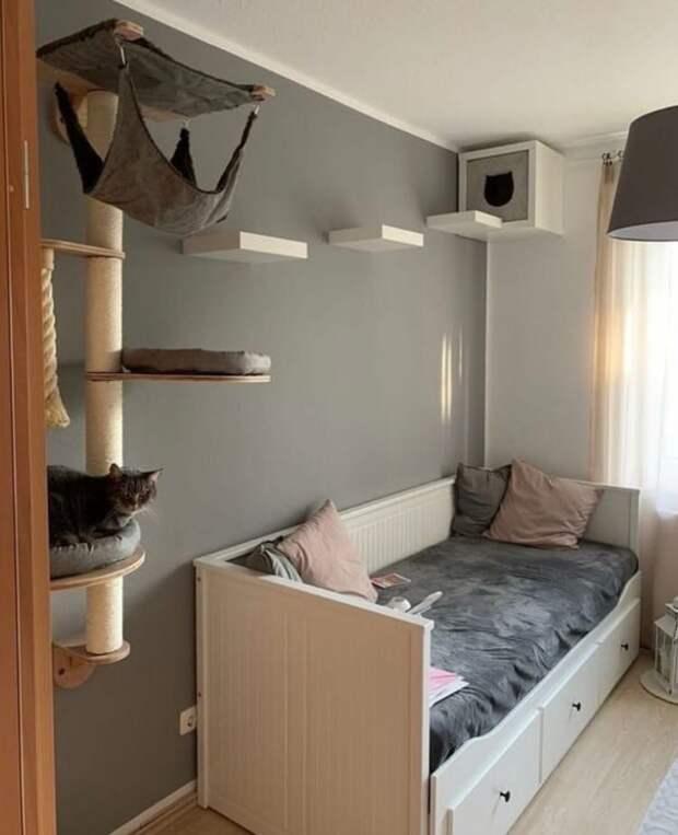 Второй этаж для кота