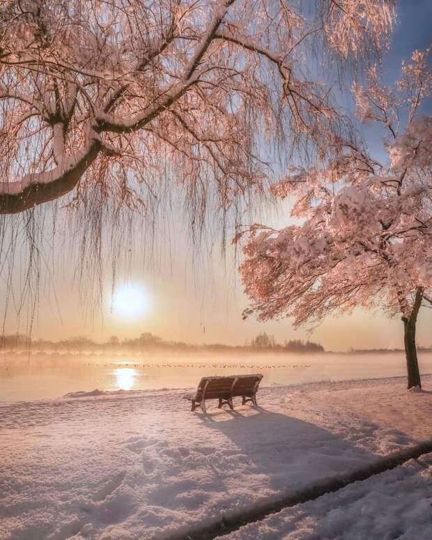 Волшебная японская природа на снимках Макико Самедзимы